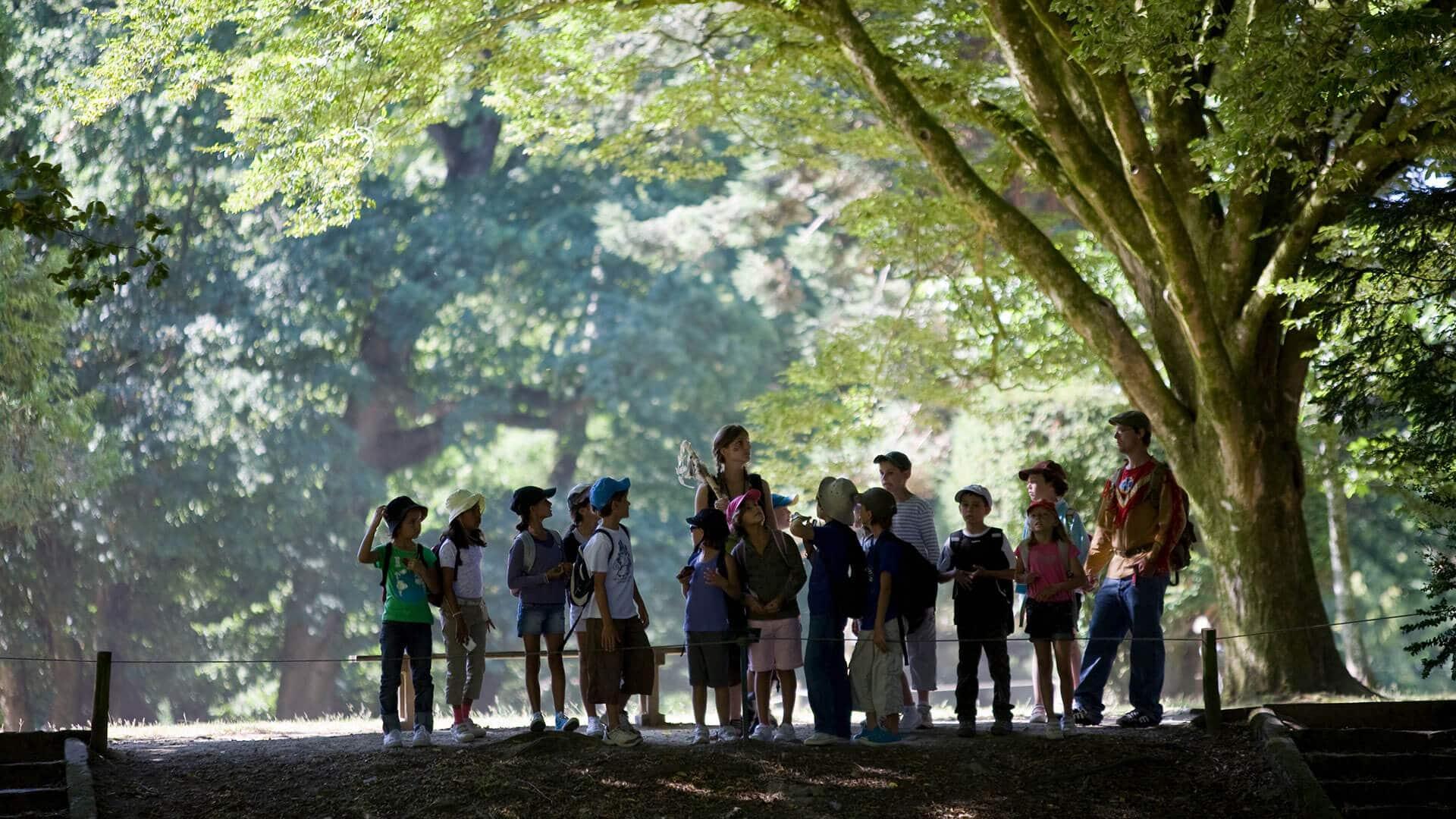 visite groupe parc branféré
